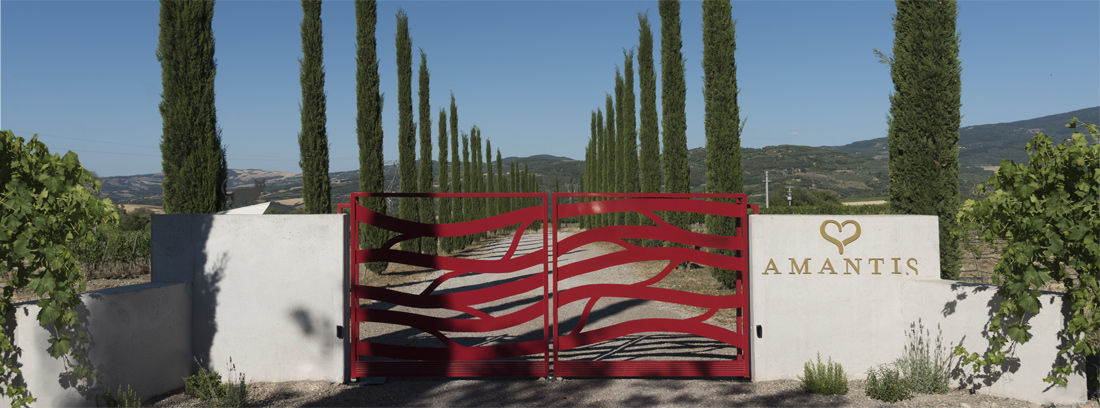 amantis_azienda_agricola_cancello_vino